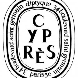 Ovale Cyprès - Desmond Knox-Leet