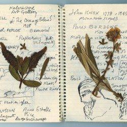 Carnet (notebook) de Desmond Knox-Leet
