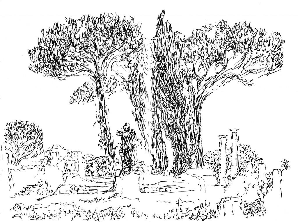 Dessin de Desmond Knox-Leet: jardin de Provence