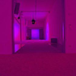 Dream House - installation musicale de La Monte Young