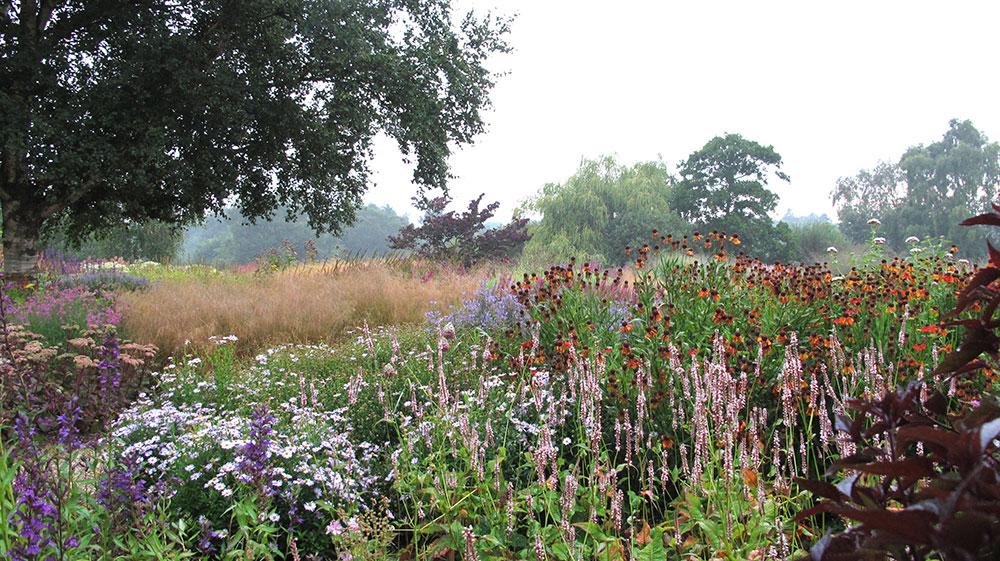 Jardin De Pensthorpe Jardin De Hummelo ( © The Mocacelli Press)
