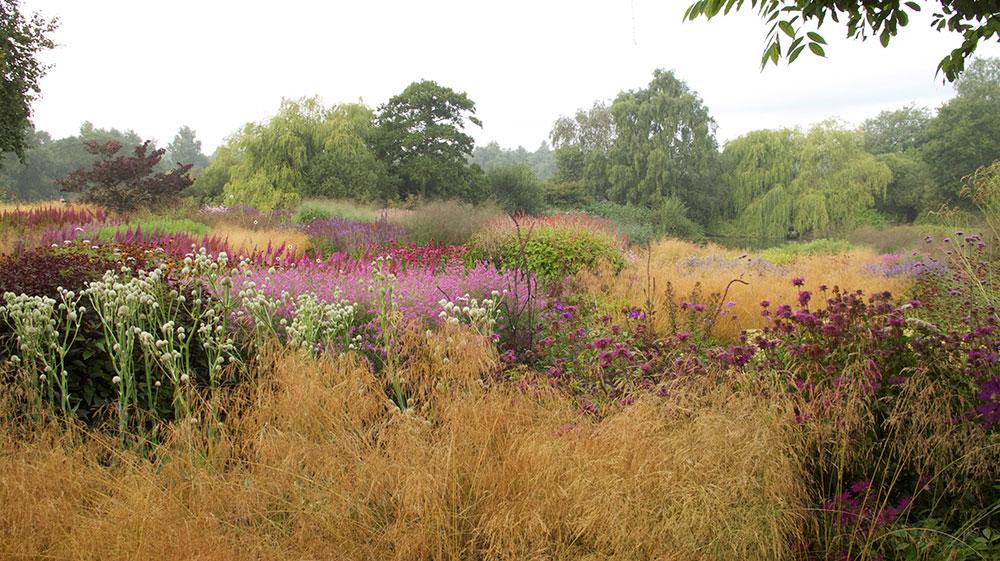 The gardens of piet oudolf memento for Piet oudolf pflanzplan