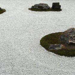 Jardin de Ryōan-ji (détail)