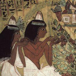 Cônes  parfumés (Shnedjem et son épouse portant sur  la tête des cônes parfumés,Thèbes , tombe XIX° dynastie),   Lenars/Explorer.