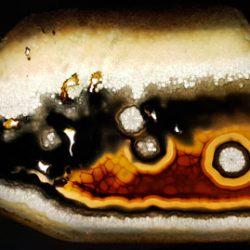 Agathe polyédrique paradoxale provenant de la collection Roger Caillois (photographie©Lelorgnonmélancolique), Muséum National d'Histoire Naturelle, Paris.