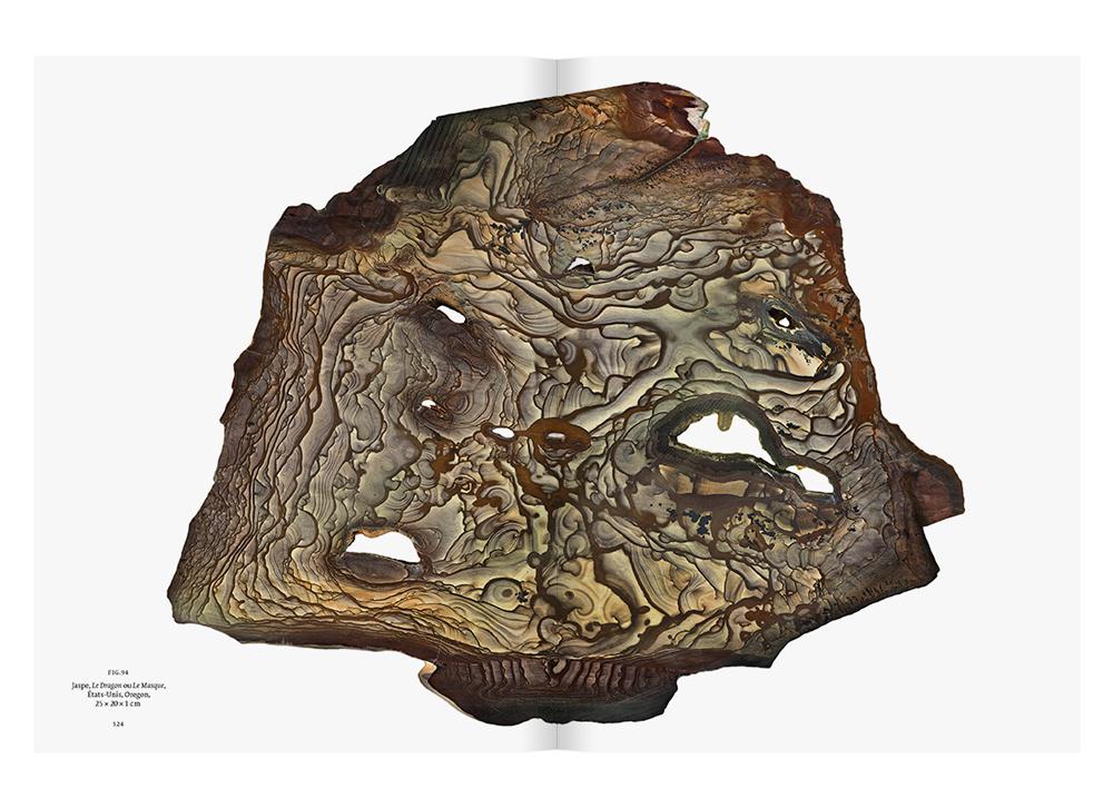 Agate, collection de Roger Caillois, dans son ouvrage L'écriture des pierres (photo © François Farges) Muséum national d'Histoire naturelle, Paris.