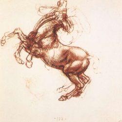 Léonard de Vinci (1452-1519) - Élevage du cheval, 1503-4, Bibliothèque Royale, Windsor