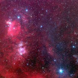 La Ceinture de la Sorcière, dans constellation d'Orion (@Stéphane Gusard).