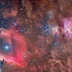 Plusieurs nébuleuses dans Orion, M42, Tête de Cheval et la Flamme.