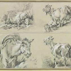 Jean-Baptiste Huet (1745-1811) - Trois moutons, une chevre, un âne et reprise de son museau (Collection privée)
