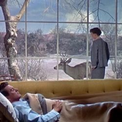 All that Heaven allows (Rock Hudson & Jane Wyman)