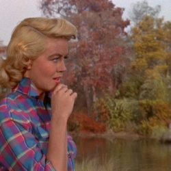 Written on the Wind (Dorothy Malone)