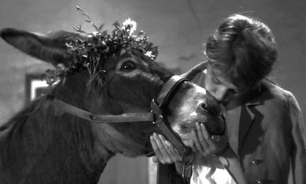 Le baiser d'amour - image extraite du film Au hasard Balthazar, de Robert Bresson (1965)